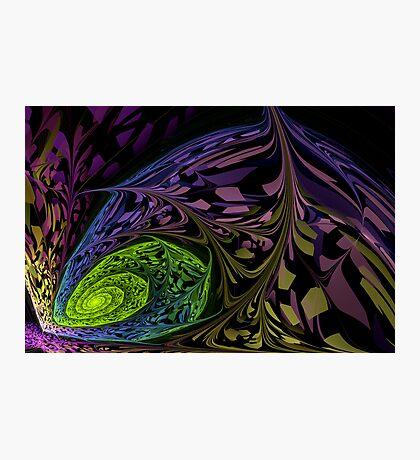 Organic Oil Blend Photographic Print