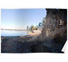 Fallen Tree, Ault Island, Ont Poster