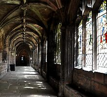 the cloister by Karen E Camilleri