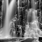 Waterfall in the Tarkine by Kevin McGennan