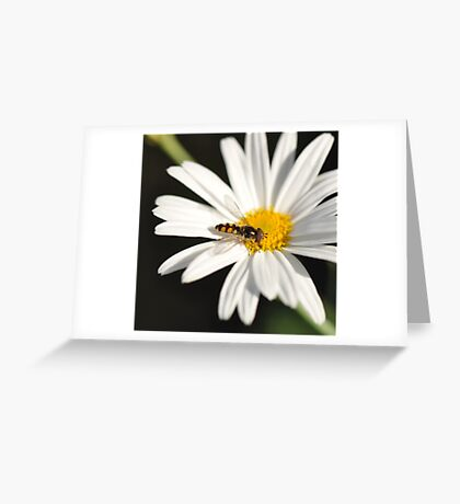 The Power of Simplicity ~ Greeting Card