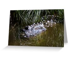 Alligator in the water Greeting Card