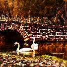 The Bridge by hampshirelady