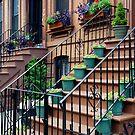 Brooklyn Brownstone by Harry Oldmeadow