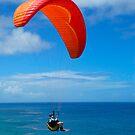 Paraglider by Antoine de Paauw