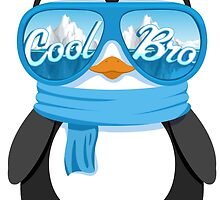 Cool Bro by fartattack