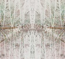 Oscillogram by Benedikt Amrhein