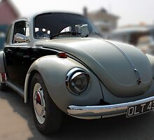 Beetle by larry flewers