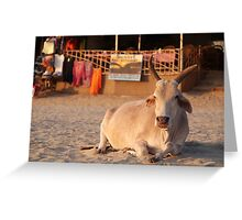 Bull on the Beach at Sunset Palolem Greeting Card