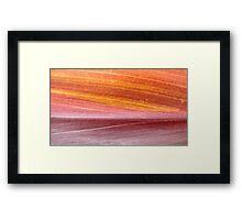 Red Dawn Framed Print