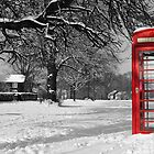 Phone Box on The Village Green by Will Corder | Photography