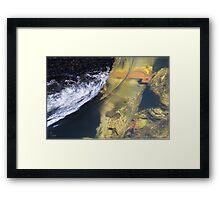Water 3 Framed Print