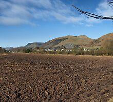 Ochil Hills by evisonphoto