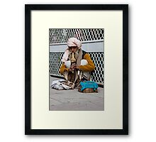 Cobra Twins Framed Print