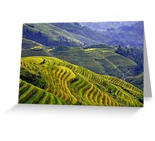 Rice terraces in Longsheng, China Greeting Card