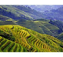 Rice terraces in Longsheng, China Photographic Print