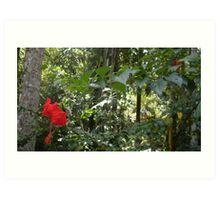 Red Flower - Harna Art Print
