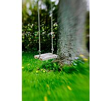 Swing on the tree Photographic Print