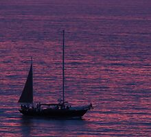 Purple Ocean - Oceano Violeta by Bernhard Matejka
