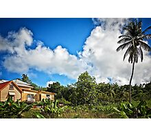 Tropical Retreat Photographic Print