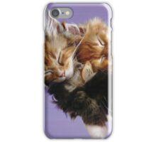 Kittens on a hammock iPhone Case/Skin