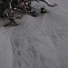 Sand Prints by Sarah Trent