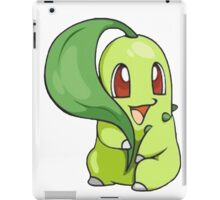 cute pokemon  iPad Case/Skin