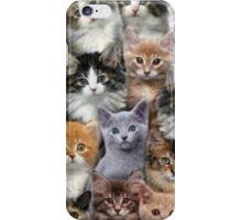 Moggy Muriel iPhone Case/Skin