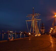 Tall Ships in Port by Barb Leopold
