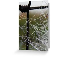 Icy Morning Web Greeting Card