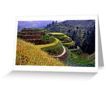 Longsheng Rice Terraces Up Close Greeting Card