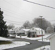 Feb. 19 2012 Snowstorm  by dge357