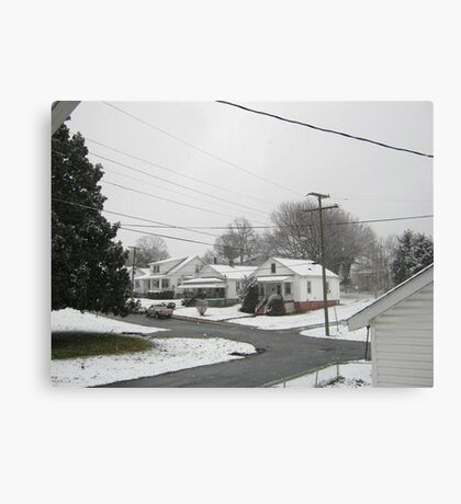 Feb. 19 2012 Snowstorm  Canvas Print