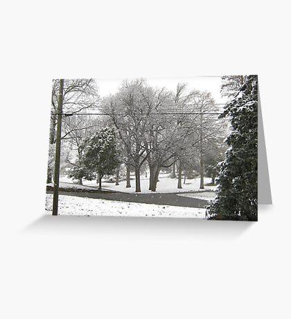 Feb. 19 2012 Snowstorm 2 Greeting Card