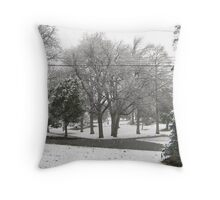 Feb. 19 2012 Snowstorm 2 Throw Pillow