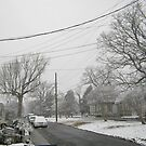 Feb. 19 2012 Snowstorm 5 by dge357