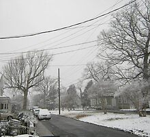 Feb. 19 2012 Snowstorm 5 by dge357