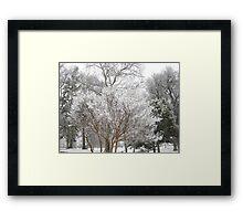 Feb. 19 2012 Snowstorm 6 Framed Print