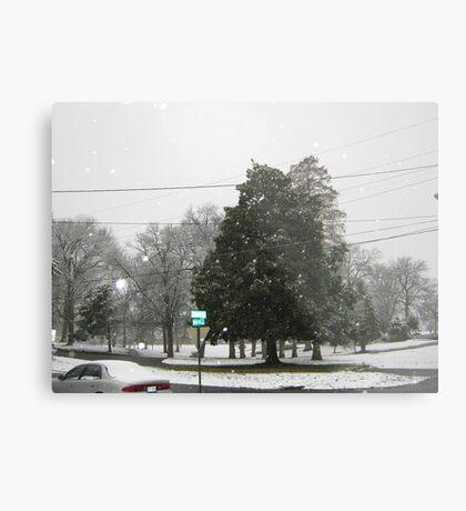 Feb. 19 2012 Snowstorm 7 Metal Print