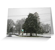 Feb. 19 2012 Snowstorm 7 Greeting Card