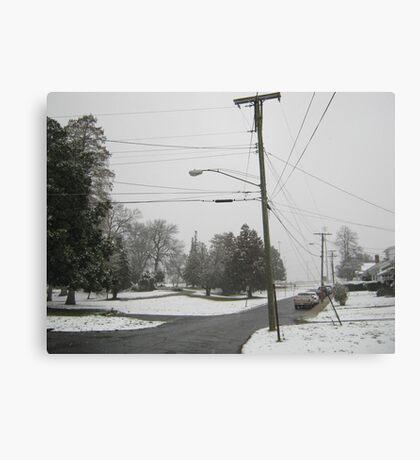 Feb. 19 2012 Snowstorm 8 Canvas Print