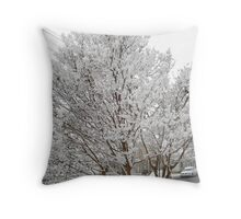 Feb. 19 2012 Snowstorm 13 Throw Pillow