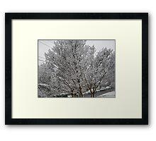 Feb. 19 2012 Snowstorm 14 Framed Print