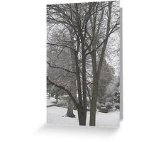 Feb. 19 2012 Snowstorm 16 Greeting Card