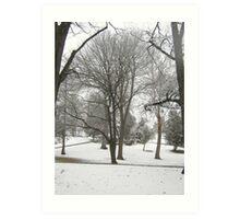 Feb. 19 2012 Snowstorm 17 Art Print