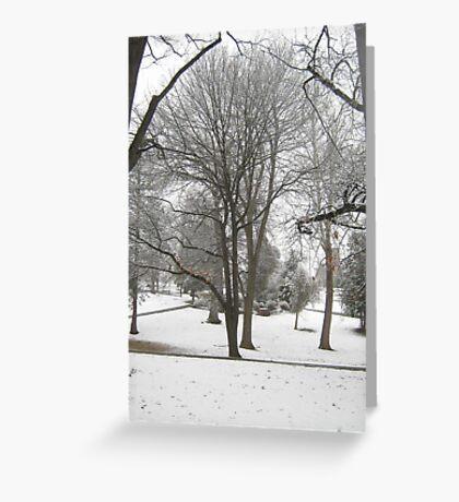 Feb. 19 2012 Snowstorm 17 Greeting Card