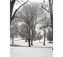 Feb. 19 2012 Snowstorm 17 Photographic Print
