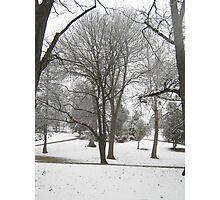Feb. 19 2012 Snowstorm 17 Photographic Print