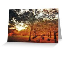 Autumn in Green Park, London Greeting Card