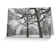 Feb. 19 2012 Snowstorm 19 Greeting Card